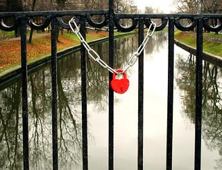 (310/365) Lock