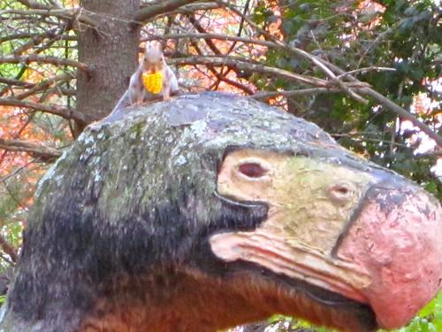 Dinosaur Land Squirrel and Corn