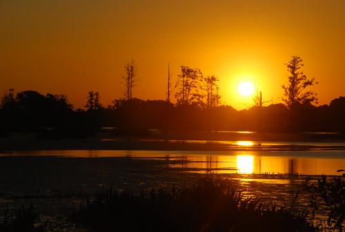 florida lakeland cbbr 110511 circlebbarreserve klauspetermemorialwalk