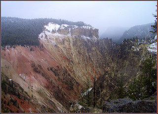 Yellowstone Canyon. Snow begins to fall.