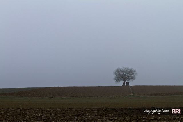 the_fool_on_the_hill_on_foggy_morning