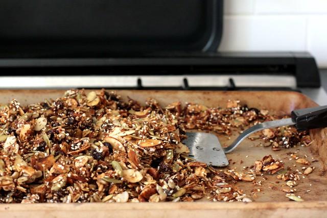 grain free granola
