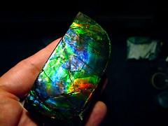 jewellery(0.0), gemstone(0.0), emerald(0.0), opal(1.0), yellow(1.0), aqua(1.0), macro photography(1.0), azure(1.0), green(1.0), blue(1.0),