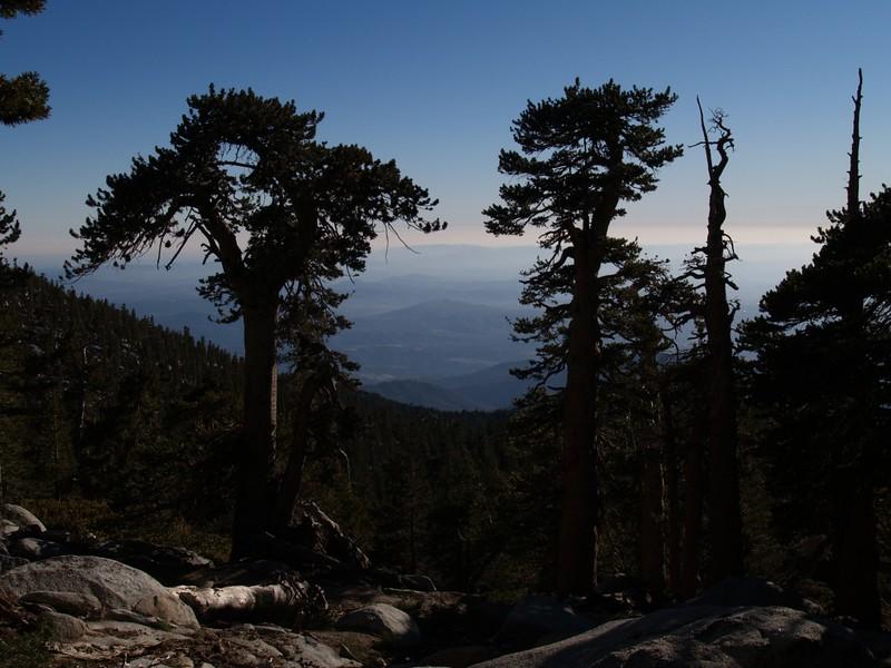 On the Deer Springs Trail heading down from San Jacinto Peak