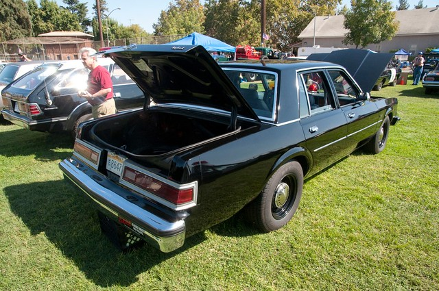 Police 1988 Dodge Diplomat Back