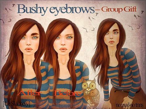 [the-Skinnery]-Bushy eyebrows-Group Gift