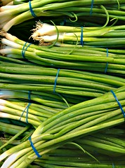 plant(0.0), crop(0.0), plant stem(0.0), vegetable(1.0), welsh onion(1.0), produce(1.0), food(1.0), scallion(1.0), chives(1.0), leek(1.0),