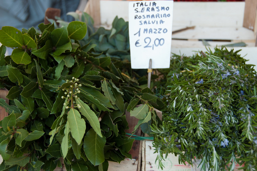 herbs from S. Erasmo at the Rialto produce market