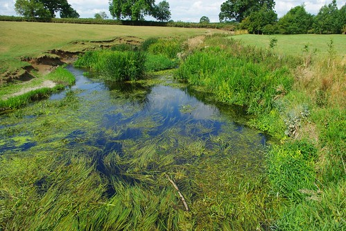 20110814-02_River Avon at Little Lawford by gary.hadden