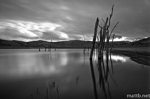 old trees sky bw reflection water clouds dead 10stop nd30