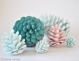 Hand painted pine cones