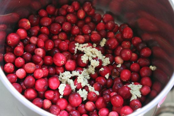 cranberriesginger