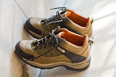 Trekking shoes, Trekking Shoe