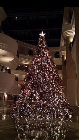 20111126君悅聖誕樹