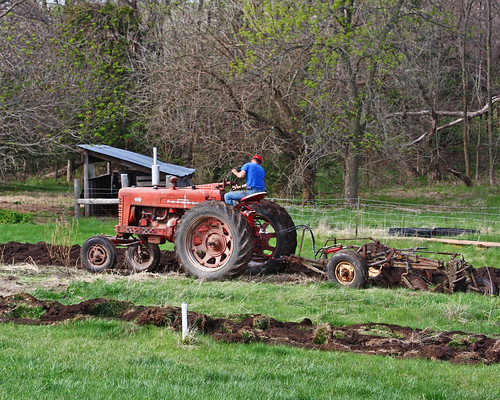 Plowing our Garden