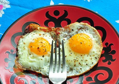 Egg Owl