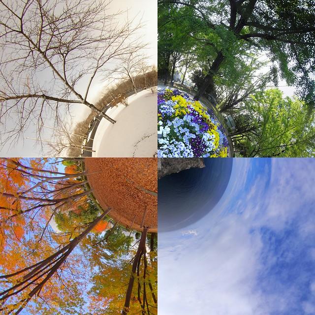 Four seasons in Japan