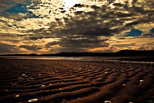 sky cloud sun shells canada beach water clouds canon landscape sand bc britishcolumbia sunny vancouverisland shore 5d canoneos parksville canoneos5dmarkii canon5dmkii 5dmarkii canon5dmark2 5dmkii canon5dmk2 5dmk2 5dmark2