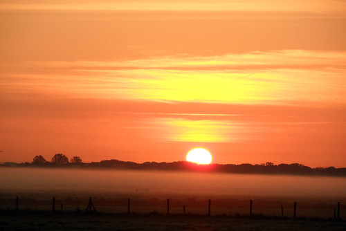 morning pink light orange sun sunlight mist holland color netherlands field fog sunrise early bright polder docman groet groeterpolder