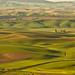 Palouse area by xasdrd