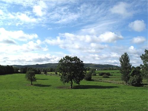 trees sky grass farm derrylin countyfermanaghireland drumany