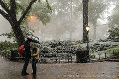 Snowstorm at Central Park