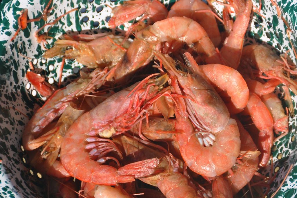 Roasted Royal Red Shrimp