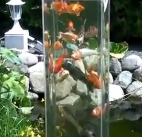 Koi Tower