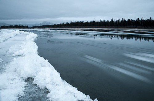 Ice Floes On The Yukon River