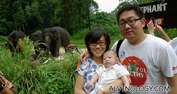 Family photo with the elephants