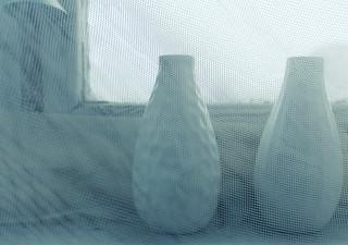 (325/365) Two vases