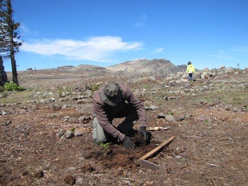 08-Campo de Educação Ambiental do Cabeço da Lenha-21.03.12