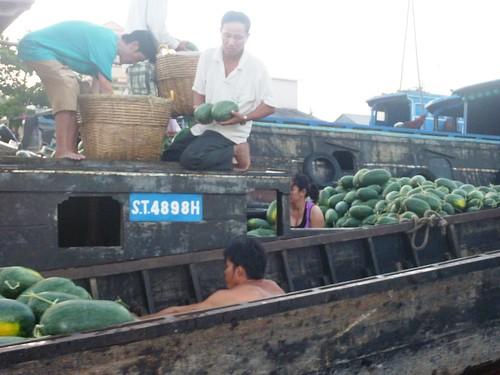 V-Can Tho-Tour-Cai Rang (48)