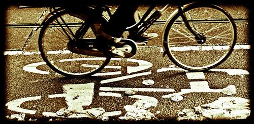 Amsterdam Bike Lane