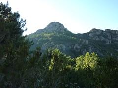 Sur la piste du Mulinelle au retour : Punta di u Castellacciu
