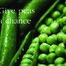 WordFinder - Give peas a chance