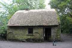 thatching, hut, shack, property, cottage, house, home, rural area,