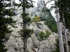 Sente de Samulaghja : en vue des contreforts de Punta Samulaghja (accès grimpe)