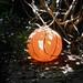 Small photo of Ball as Lantern