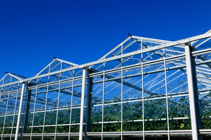 commercial greenhouse construction