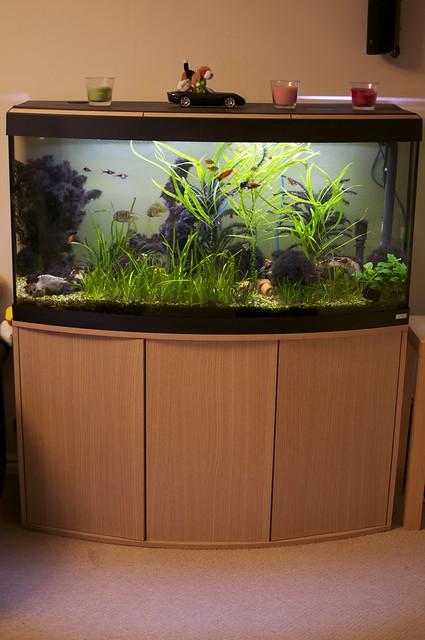 fluval vicenza 260 equipment fish tropical fish forums. Black Bedroom Furniture Sets. Home Design Ideas