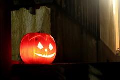 Kürbis an Halloween schön geschnitzt