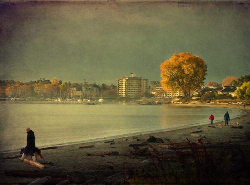 A November dawn by ZedZap