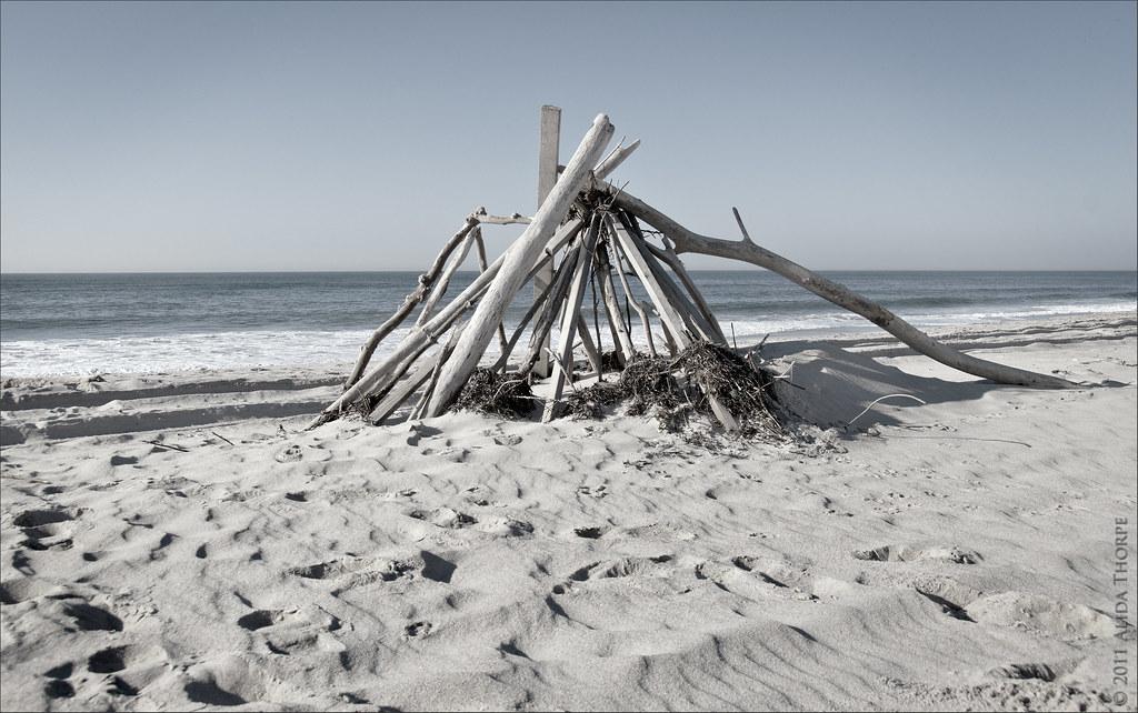 driftwood davis park
