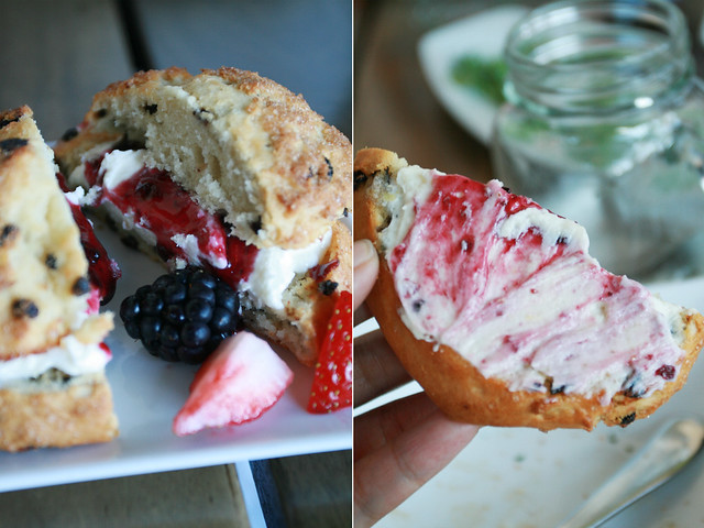 scone, berries & clotting cream