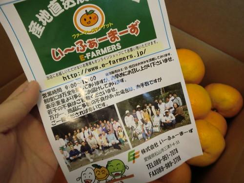 愛媛みかん20111120-005