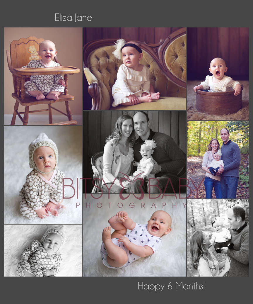 baby photographer 6 month old collage