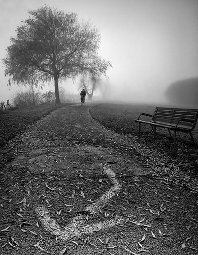 park november blackandwhite bicycle fog bench denmark cyclist path skinnyde monotone danmark jutland jylland viborg 2011