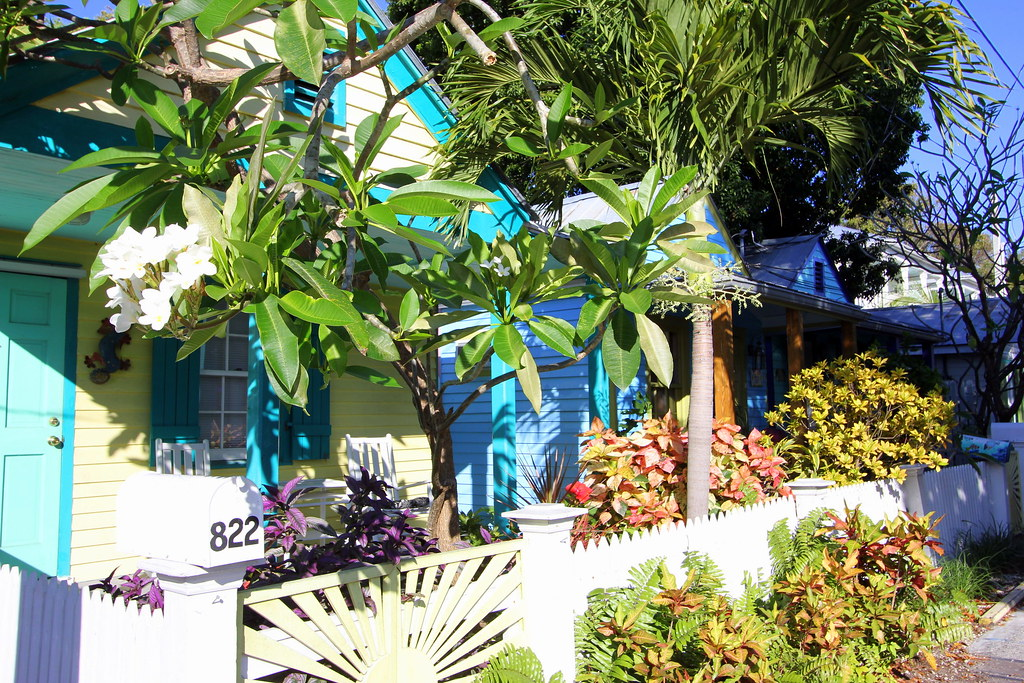 818 Terry Lane Key West Tropical Paradise At An