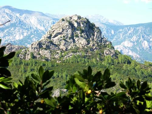Sur la crête de Belliche : vue de Punta di u Castellacciu